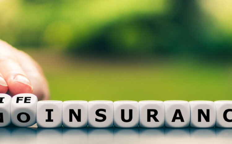 What is Life Insurance and why do you need it